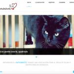www.katubihotz.com